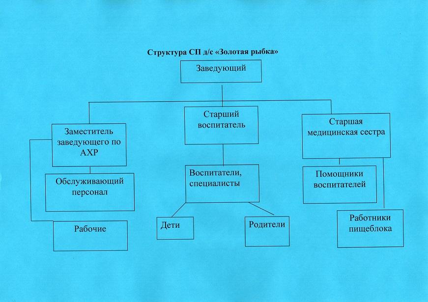 struktura sp